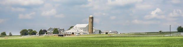 Панорама ранчо фермы Стоковое Изображение