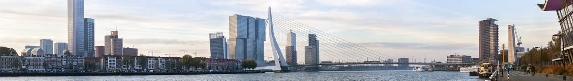 Панорама Роттердама будя в раннем утре стоковая фотография