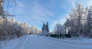 Панорама снежных древесин, дорога, Россия, Ural стоковая фотография