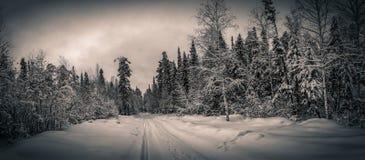 Панорама снежных древесин, дорога, Россия, Ural стоковая фотография rf