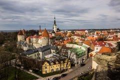 Панорама старого Таллина, Эстонии стоковое изображение