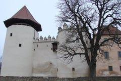 Панорама старых исторических зданий в центре города Kezmarok в Словакии Стоковое Изображение RF