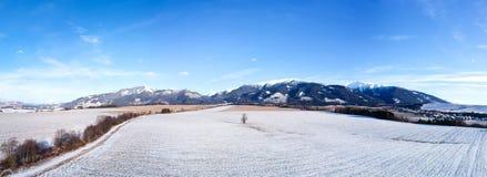 Панорама страны зимы стоковое фото