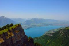 Панорама с высокогорным лугом от Niederhorn Стоковые Фото
