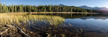 Панорама травы и озера Колорадо Стоковые Изображения