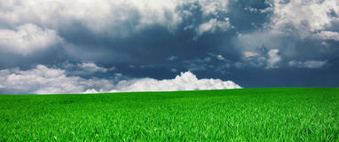 Панорама луга и облака Стоковые Изображения
