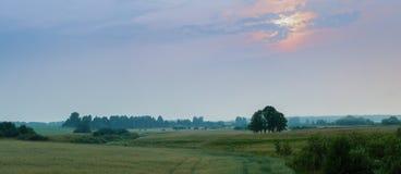 Панорама луга на заходе солнца Стоковые Изображения RF