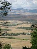 Панорама характерного ландшафта поля севера Апулии на юге  Италии Стоковые Фото
