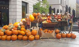 Панорама хеллоуина Стоковые Фотографии RF