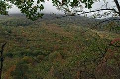Панорама холма осенью Стоковые Изображения RF