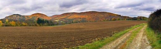 панорама холмов осени Стоковое Изображение RF