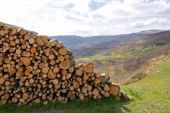 Панорама холмов с woodpile Стоковые Фото