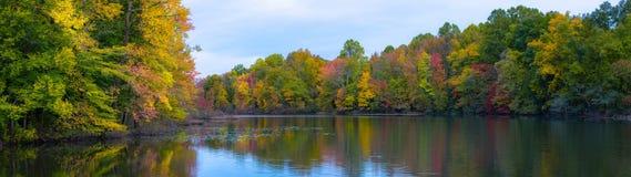 Панорама цветов осени отражая в пруде a стоковое изображение rf