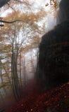 панорама Стоковые Фотографии RF