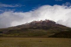 панорама cotopaxi Стоковые Изображения RF