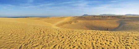 панорама fuerteventura дюн Стоковое фото RF