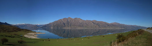 Панорама Hawea озера Стоковое Изображение RF