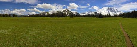Панорама Mount Rainier Стоковое Изображение RF