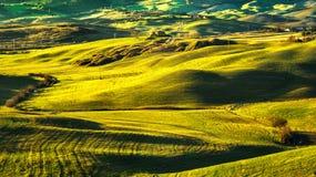 Панорама, Rolling Hills, поля и луг Volterra Тоскана, оно Стоковые Изображения