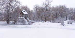 Панорама snow-covered парка Стоковое Фото