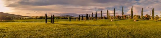 панорама tuscan ландшафта Стоковые Фотографии RF