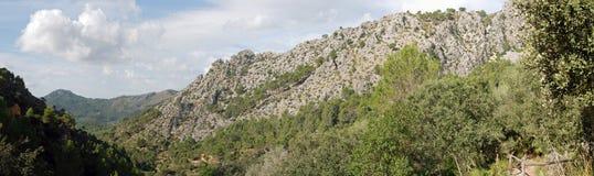 Панорамная гора Стоковые Изображения