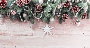 Панорамная предпосылка рождества с конусами сосны Стоковое Фото
