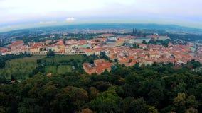 Панорамное взгляд сверху к крышам красной плитки чехии города Праги Типичные дома Праги Холм и башня Petrshin сток-видео