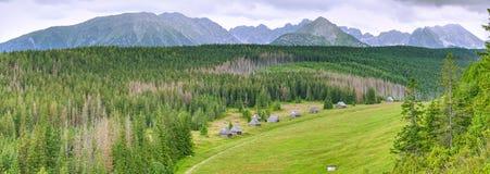 Панорамный ландшафт в горах Tatra Стоковое Изображение