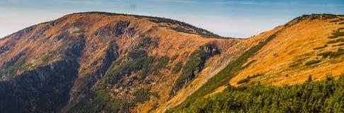 Панорамный взгляд в гигантских горах Стоковые Фото