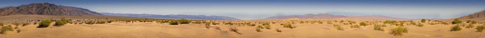 Панорамный взгляд в пустыне песчанных дюн Mesquite плоских Стоковые Фото