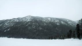 Панорамный взгляд гор зимы сток-видео