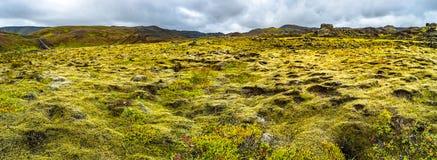 Панорамный взгляд загоренных поля травы и водопада на Icela Стоковая Фотография RF