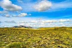 Панорамный взгляд загоренных поля травы и водопада на Icela Стоковое Фото