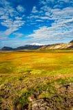 Панорамный взгляд красивого красочного исландского ландшафта, Icelan Стоковая Фотография RF