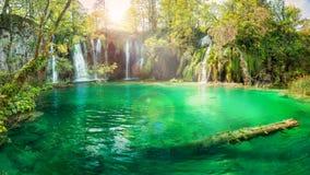 Панорамный взгляд красиво освещенных водопада и озера стоковые изображения