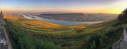 Панорамный взгляд к Rheingau, Bingen и Rheinhessen Стоковое фото RF