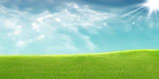 Панорамный взгляд лужка Стоковое Изображение RF