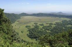 Панорамный взгляд над национальным парком Arusha Стоковая Фотография RF
