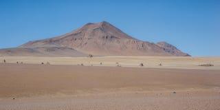 Панорамный взгляд над пустыней Сальвадора Dali в национальном заповеднике фауны Eduardo Avaroa андийском, Боливии стоковое фото