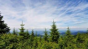 Панорамный взгляд неба стоковые фото
