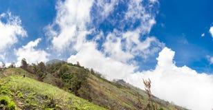Панорамный взгляд от высоты Панорамный вид холмов вулкана Agung с человеком синь заволакивает небо панорамы стоковые фото
