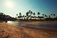 Панорамный взгляд тропического пляжа с пальмами кокоса Koh Sa Стоковое Фото