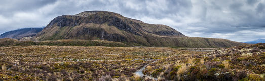 Панорамный взгляд ландшафта национального парка Tongariro Стоковые Изображения RF