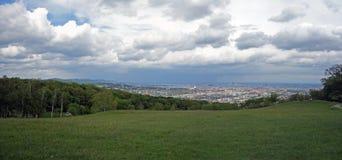 Панорамный взгляд вены Стоковые Изображения RF