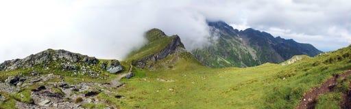 Панорамный взгляд горы Fagaras на лете Стоковая Фотография RF