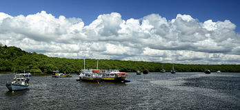 Панорамный взгляд залива реки Стоковое Фото