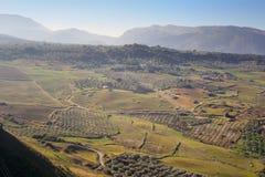 Панорамный взгляд на полях равнин Ronda окружающих Стоковые Изображения