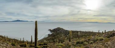 Панорамный взгляд острова кактуса Incahuasi в соли Салара de Uyuni плоском - отдел Potosi, Боливия стоковая фотография