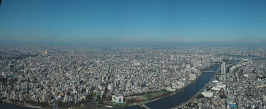 Панорамный взгляд от дерева неба токио стоковые изображения